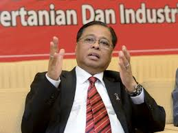 Image result for ISmail sabri