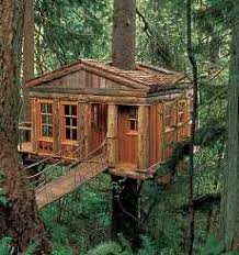 5 Fly Treehouse Designs