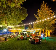 if you need to light an outside area for your wedding or backyard party premier party tent rentals has what you are looking for backyard party lighting