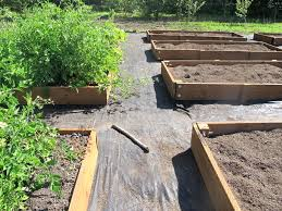 building a raised garden bed with railroad ties raised bed gardening osu extension service offers advice