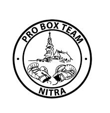 Pro box team nitra