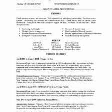 Entry Level Job Resume Template Beautiful Inspiration Resume Junior ...