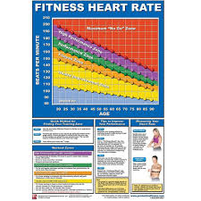 Marine Fitness Chart Productive Fitness Poster Series Heart Rate Chart Non Laminated