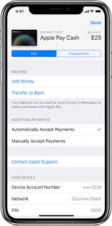 view your apple pay cash card info