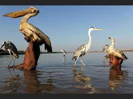 Oasis Overland - See these remarkable Mohana fishermen and...   Facebook