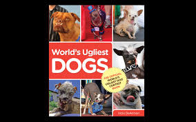 Image result for worlds ugliest dog competition poster