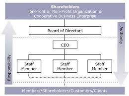 Non Profit Board Organizational Chart Www Imghulk Com
