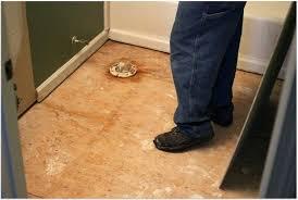 vinyl floor adhesive remover tile adhesive remover vinyl floor tile adhesive remover