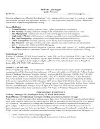 Cosy Resume Objective Examples It Manager For Resume Objectives