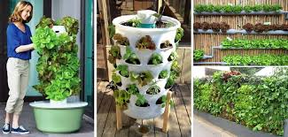 vertical vegetable garden design