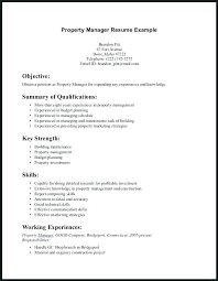 Technical Skills Resume Technical Skills To Put On Resume Best Beauteous Resume Technical Skills