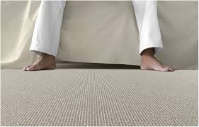 best type of carpet for allergy sufferers 28 images what