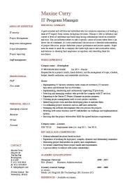 IT program manager resume, sample, CV, job description, technology, project,  career history, format
