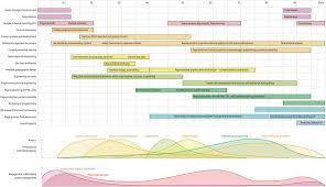 Website Design Gantt Chart Www Bedowntowndaytona Com