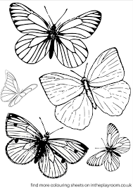 The butterfly coloring pages add spark to the kids' imagination and greatly enhance their creative skills. Free Printable Butterfly Colouring Pages In The Playroom