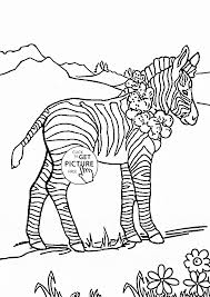 Small Picture Coloring Pages Zebra