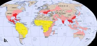 Yellow Fever Chart Yellow Fever And The World Health Organisations Eliminate