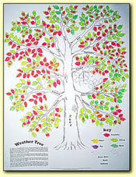 Weather Tree Chart 41 Best Head Thinking Waldorf Weather Images Weather