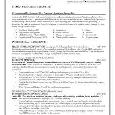 Executive Resume Writer Resumes Writers Toronto Austin Writing