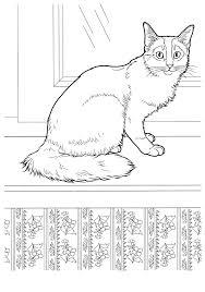 Gatticats 13 Disegni Da Colorare Per Adulti E Ragazzi
