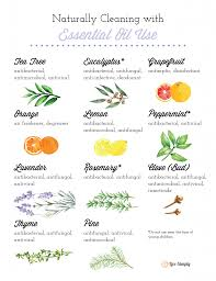 Essential Oils Uses Chart Natural Cleaning With Essential Oils 101 Live Simply