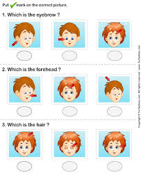 worksheet  the parts of head and face together with My Body   Lessons   Tes Teach in addition house worksheets   The House Song and worksheet   house lesson besides Human Body Face Parts Names Worksheet   Turtle Diary additionally  additionally Parts of the body …   Pinteres… in addition Face worksheet   TeacherLingo additionally Best 25  Worksheets for kids ideas on Pinterest   English together with Body Parts worksheet  can use as a dictionary to label parts further  additionally Pictures of Body Parts Worksheet   Turtle Diary. on preschool worksheets parts of the face