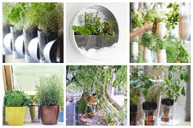 it s easier than you think and we ve put together 8 easy indoor vegetable gardens