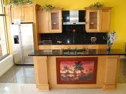 interior design kitchen cabinet refacing in modern kitchens change