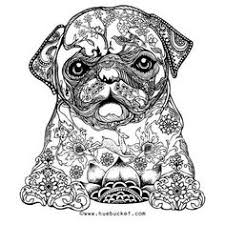 60 Best Coloring Pugs Images Coloring Pages Coloring Books