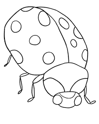 Small Picture FREE Ladybug Coloring Page lb4