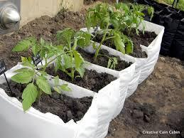 garden in a bag. Vegetable Garden In A Bag E