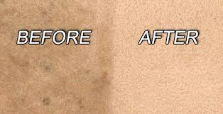 carpet cleaning vancouver british columbia