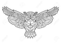 フクロウ鳥大人ベクトル イラストの塗り絵大人のための着色抗ストレスzentangle