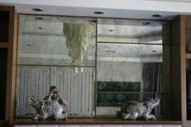community glass shower doors mirror custom 185