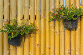 Bamboo Wall Design Images Flower Pot Holding On Bamboo Wall Background Garden Design And