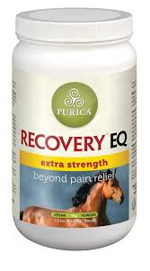 equine pain relief supplement