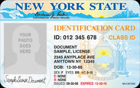 New York For State Students Id International f1