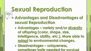 Venn Diagram Of Asexual And Sexual Reproduction Sexual And Asexual Reproduction Lessons Tes Teach