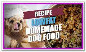 The inclusion of probiotics helps in. Pin On Best Dog Food