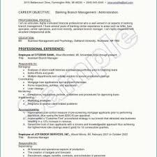 Business Management Resume Objective Sample Resume Objectives For Sales And Marketing New Sample Resume