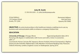 Professional Objective For A Resume 100 Luxury Pics Of Resume Examples Objective Resume Concept Ideas 40