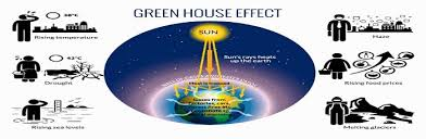green house effect an in depth elucidation of the greenhouse effect global warming