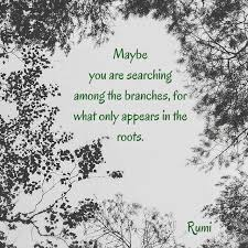 Roots Quotes Interesting Top 48 Rumi Quotes In Images Favorite Quotes Pinterest Rumi