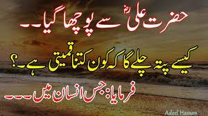 Hazrat Ali Ra Best Quotationsbest Urdu Quotesgolden Wordsprecious Quotes About Liferj Adeel