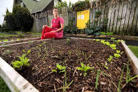 beginner s guide to guerrilla gardening
