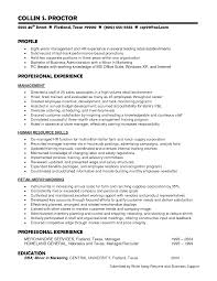 Styles Of Resumes Functional Style Resume Example Dadajius 12