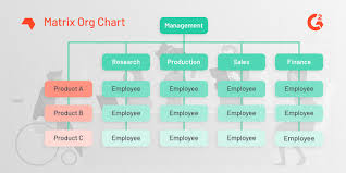 Types Of Organizational Chart In Management What Is An Organizational Chart Examples And Free Template