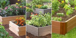 composite raised garden bed. Simple Bed Cedar Vs Recycled Plastic Composite Raised Garden Beds  See More At  Learneartheasycom201404 Throughout Bed E