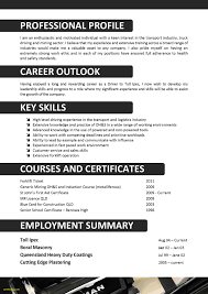 Driver Resume Sample Free Download We Can Help With Professional