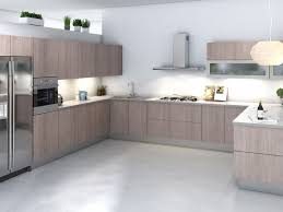 Incredible Modern Kitchen Cabinets Inspirational Home Design Ideas